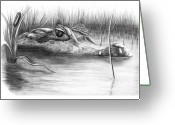 Florida Swamp Greeting Cards - Florida Gator Greeting Card by Murphy Elliott