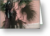 Puffy Greeting Cards - Florida Palm   4 Greeting Card by Susanne Van Hulst