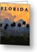 Sea Oats Digital Art Greeting Cards - Florida Poster Greeting Card by David Lee Thompson