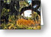 Melbourne Beach Greeting Cards - Florida Shade Greeting Card by Joan  Minchak
