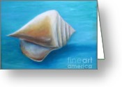 Seashell Art Greeting Cards - Florida Shell Greeting Card by Gabriela Valencia