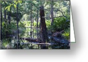 Florida Swamp Greeting Cards - Florida Swamp Greeting Card by Kenneth Albin
