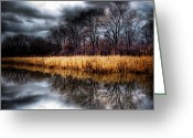 Darken Greeting Cards - Flow of the Fall Greeting Card by Steven Arens