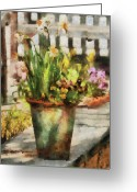 You Greeting Cards - Flower - Daffodil - A pot of daffodils Greeting Card by Mike Savad