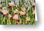 You Greeting Cards - Flower - Iris - Melodie diris Greeting Card by Mike Savad