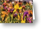 Orchestra Greeting Cards - Flower - Iris - Orchestra Greeting Card by Mike Savad