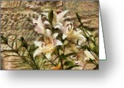 You Greeting Cards - Flower - Lily - White Lily Greeting Card by Mike Savad