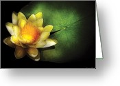 Glowing Greeting Cards - Flower - Lotus - Nymphaea  Chromatella - Yellow Lily Greeting Card by Mike Savad