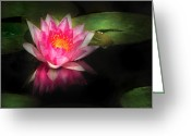 Lilly Pad Greeting Cards - Flower - Lotus - Nymphaea Gloriosa - Intensity Greeting Card by Mike Savad