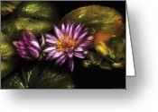 Lily Pad Greeting Cards - Flower - Lotus - Soaking in Sunlight Greeting Card by Mike Savad