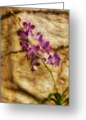 You Greeting Cards - Flower - Orchid - Just Splendid Greeting Card by Mike Savad