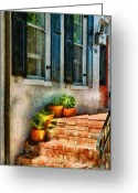 Apartment Greeting Cards - Flower - Plants - The Stoop  Greeting Card by Mike Savad