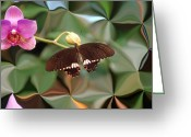 Butterflies And Blue Flowers Greeting Cards - Flower and Butterfly Greeting Card by Aimee L Maher