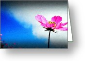 Smile Greeting Cards - Flower and Sky Greeting Card by Sanjay Avasarala
