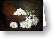 "\""floral Still Life\\\"" Greeting Cards - Flower Box Greeting Card by Tom Mc Nemar"