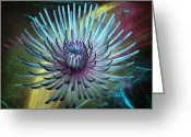 Fine_art Greeting Cards - Flower  Greeting Card by Louis Ferreira