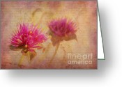 Reminiscing Greeting Cards - Flower Memories Greeting Card by Judi Bagwell