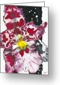 Flower Photos Greeting Cards - Flower ORCHID 11 Elena Yakubovich Greeting Card by Elena Yakubovich