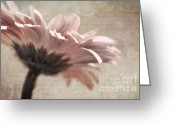 Brown Tones Photo Greeting Cards - Flower Poetry Greeting Card by Viaina