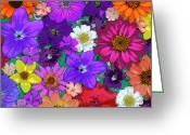 Photography Painting Greeting Cards - Flower Pond Greeting Card by JQ Licensing
