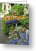 Streets Greeting Cards - Flower stand in Paris Greeting Card by Elena Elisseeva