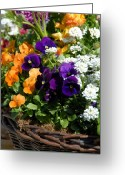Flowers Flowers And Flowers Greeting Cards - Flowers 100 Greeting Card by Joyce StJames
