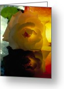 Romance Glass Art Greeting Cards - Flowers After Dark Greeting Card by Etti Palitz