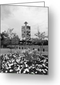 Citi Field Greeting Cards - FLOWERS AT CITI FIELD in BLACK AND WHITE Greeting Card by Rob Hans