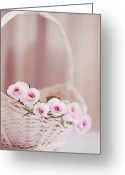 Inside Of Greeting Cards - Flowers In Basket Greeting Card by This Wonderful Life