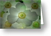 Flower Art Greeting Cards - Flowers in my Garden Greeting Card by Louis Ferreira