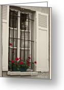 Selective Color Greeting Cards - Flowers in Paris windowbox Greeting Card by Sheila Smart