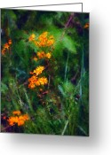 Photo Manipulation Greeting Cards - Flowers in the Woods at the Haciendia Greeting Card by David Lane
