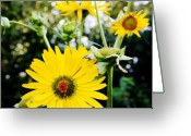 William And Magdalena Green Greeting Cards - Flowers Greeting Card by Magdalena Green