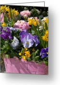 Flowers Flowers And Flowers Greeting Cards - Flowers176 Greeting Card by Joyce StJames