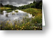 Beautiful Clouds Greeting Cards - Flowery Lake Greeting Card by Carlos Caetano