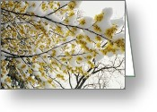 Washington Cathedral Greeting Cards - Fluffy Snow Clings To The Yellow Greeting Card by Stephen St. John