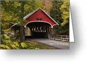 Grafton County Greeting Cards - Flume Gorge Covered Bridge - D007240 Greeting Card by Daniel Dempster