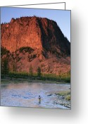 Wyoming Greeting Cards - Fly Fishing On The Madison River Greeting Card by Drew Rush