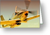 Sports Prints Greeting Cards - Flyin Golden Boeing North American P-51D Mustang and Brant Seghetti   Greeting Card by Gus McCrea