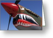 Military Artwork Greeting Cards - Flying tiger plane Greeting Card by Garry Gay