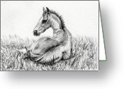Livestock Drawings Greeting Cards - Foals Delight Greeting Card by Dana Lysons