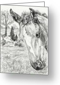 Livestock Drawings Greeting Cards - Foals Paradise Greeting Card by Dana Lysons