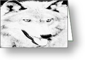 Beautiful Face Wolf Greeting Cards - Focus Greeting Card by Debra     Vatalaro