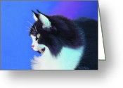 Tuxedo Greeting Cards - Focus Greeting Card by Tracy L Teeter