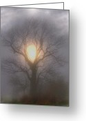 Thunderstorms Greeting Cards - Fog N Light Greeting Card by Emily Stauring