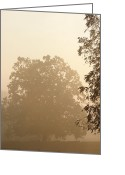 Diffused Greeting Cards - Fog over Countryside Greeting Card by Olivier Le Queinec