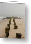 Wood Greeting Cards Framed Prints Greeting Cards - Fog Sits On Bay Head Beach - Jersey Shore Greeting Card by Angie McKenzie