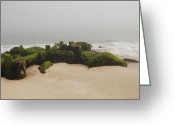 Wood Greeting Cards Framed Prints Greeting Cards - Fog Sits On Bay Head Beach II- Jersey Shore Greeting Card by Angie McKenzie