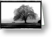 Stanley Pyrography Greeting Cards - Foggy Day H-4 Greeting Card by Mauro Celotti