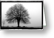 Stanley Pyrography Greeting Cards - Foggy Day H-5 Greeting Card by Mauro Celotti